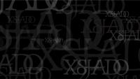 13_xsjado-2010-intro-01.jpg